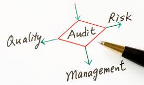 Auditor_Audit_SOX_non-profit_company_FIFA_scandal.jpg